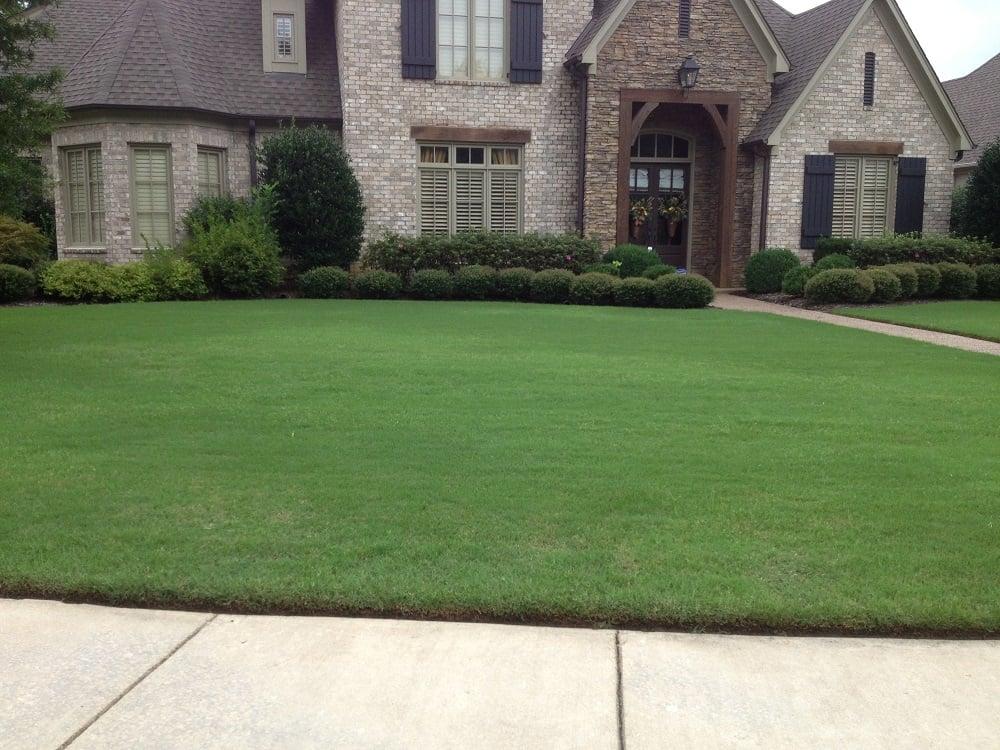 Bermuda Grass in Memphis lawn