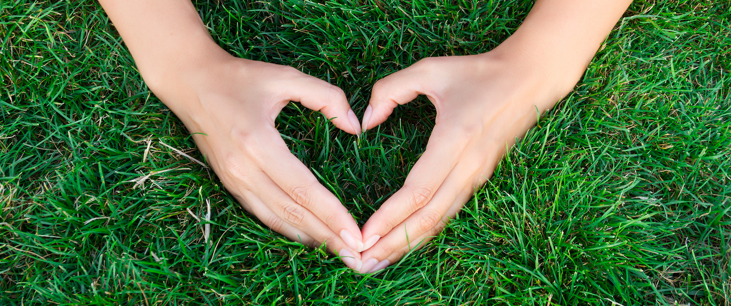 hands in the shape of a heart on green grass