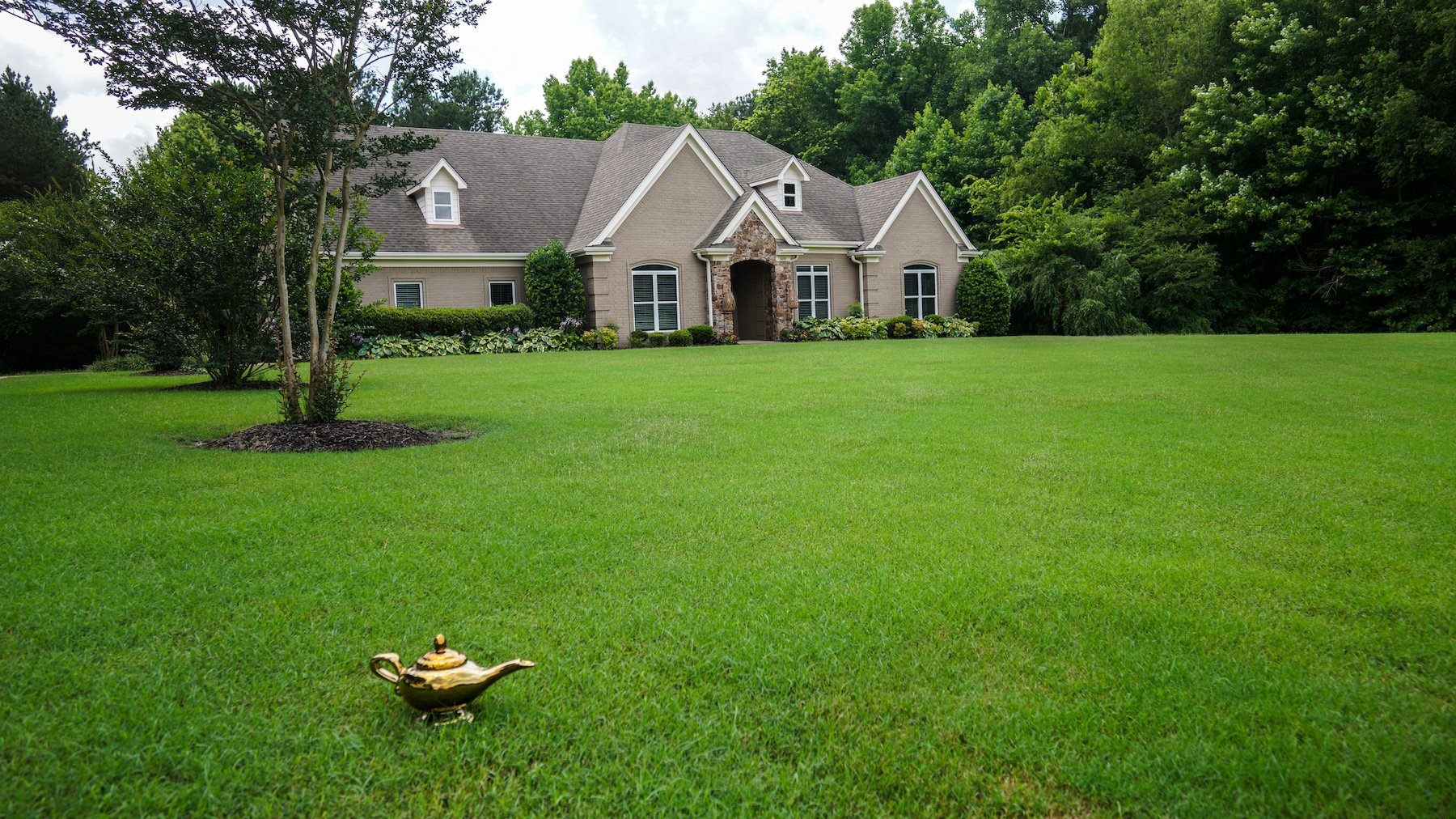 Lush green lawn cared for by Master Lawn