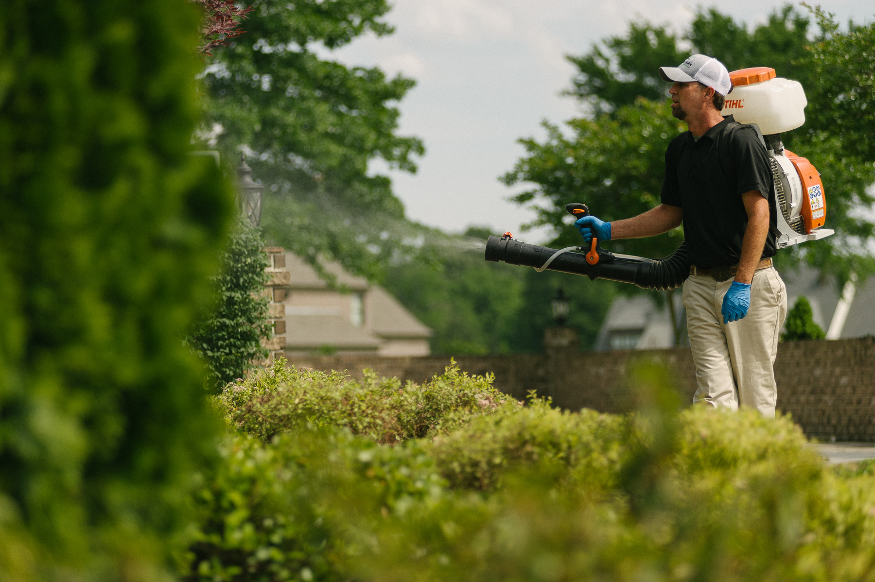 Master Lawn technician spraying mosquito control