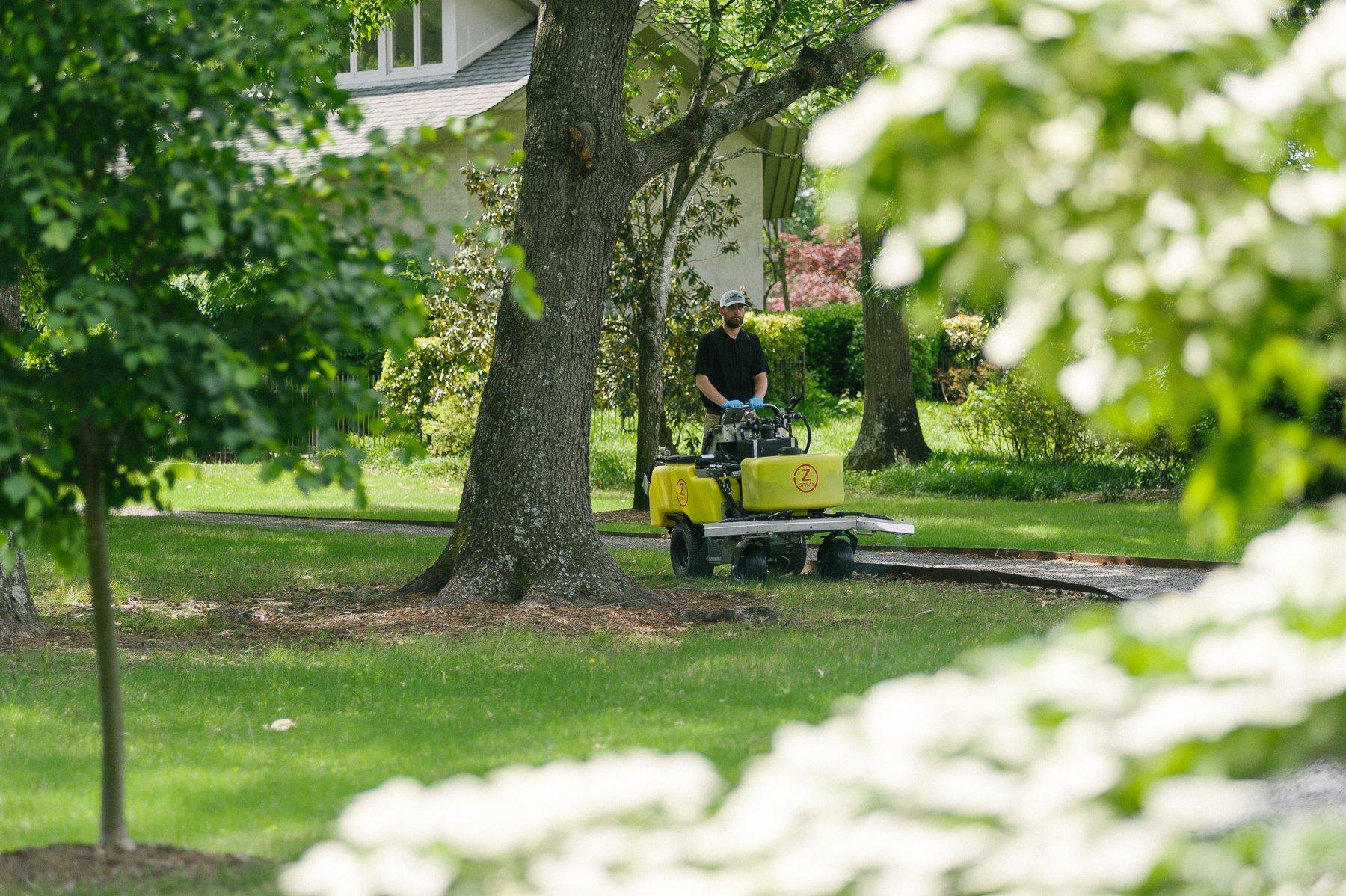 lawn technician near tree with mulch ring
