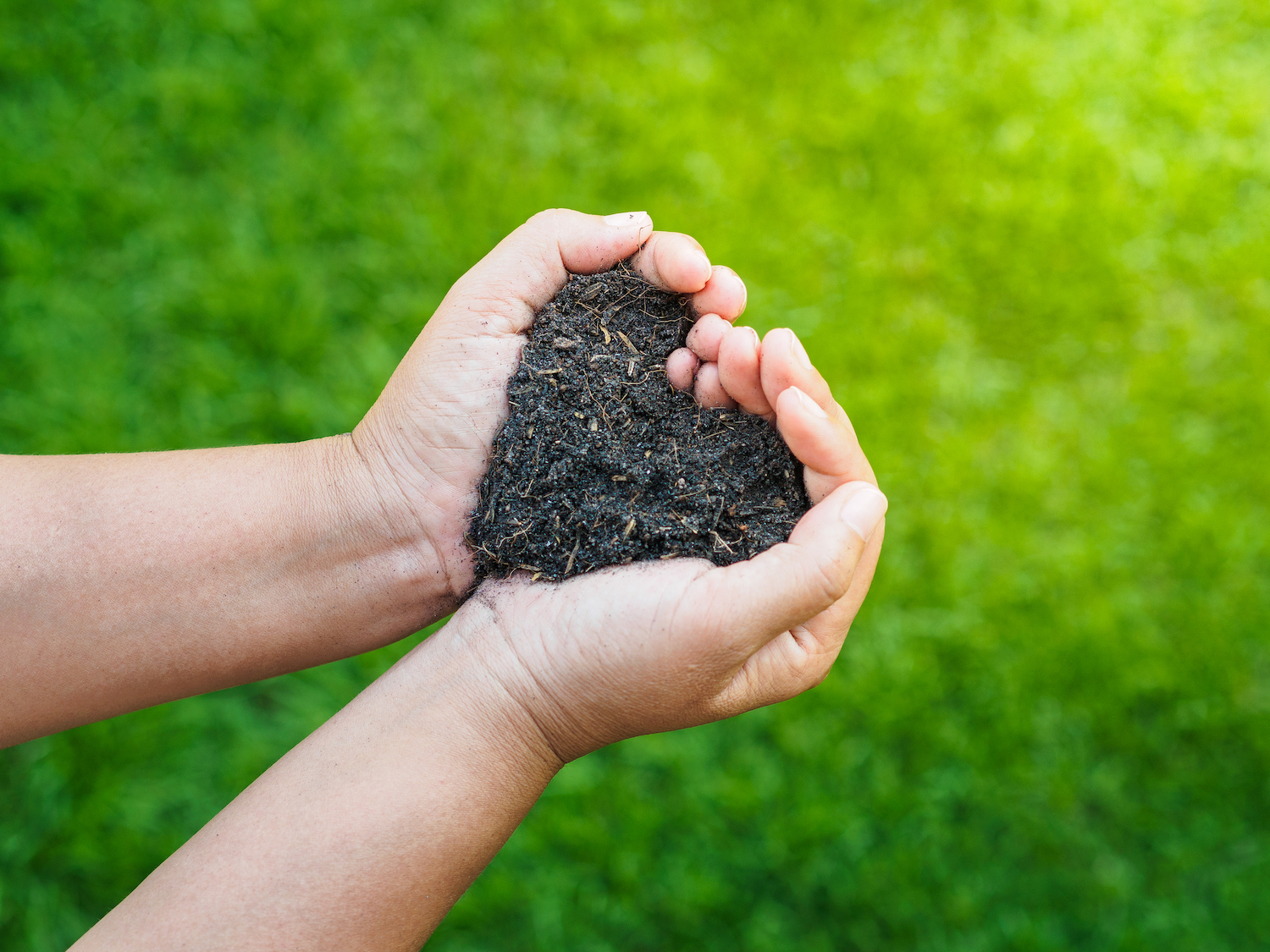 hands holding soil with probiotic soil additive