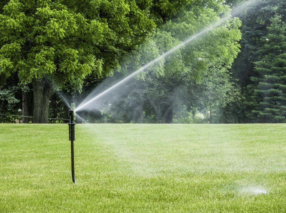 irrigation after lawn fertilizing